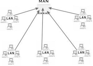 gambar 3 jaringan man
